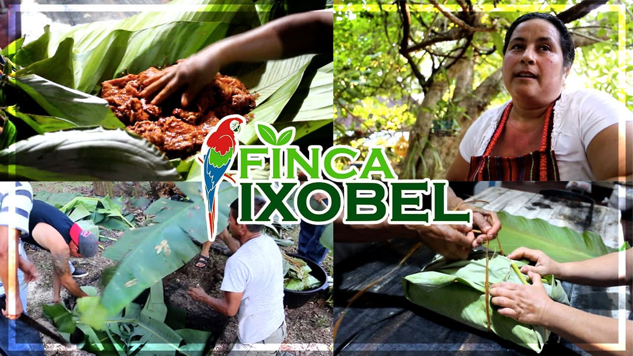 finca ixobel eco hotel poptun peten guatemala video