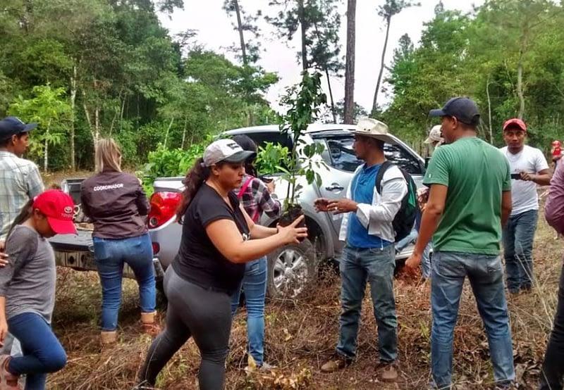 finca ixobel eco hotel poptun peten guatemala ecological